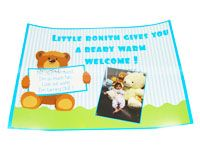 Posters / Cutouts - Teddy Bear theme birthday supplies