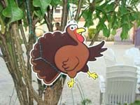 Barn Turkey poster - Barnyard