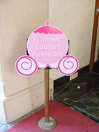 Fairy Princess theme Princess parking