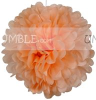 Peach Paper Pom pom - Butterfly Birthday